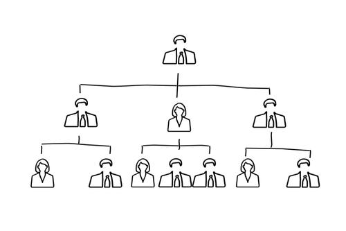 organization chart  executive  staff