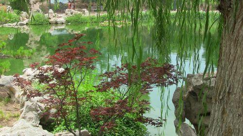 Oriental Pond