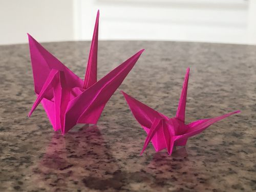 origami bogota colombia