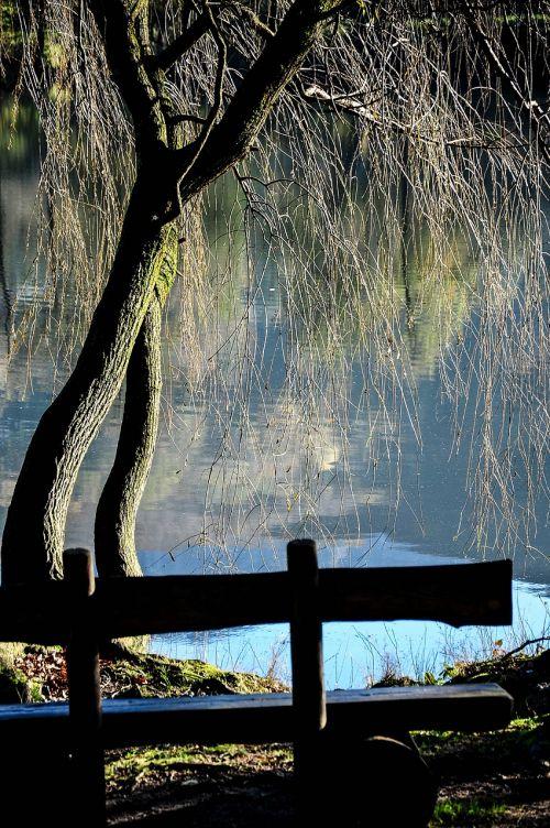 origlio lake nature
