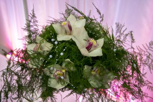 ornament decoration flower arrangement