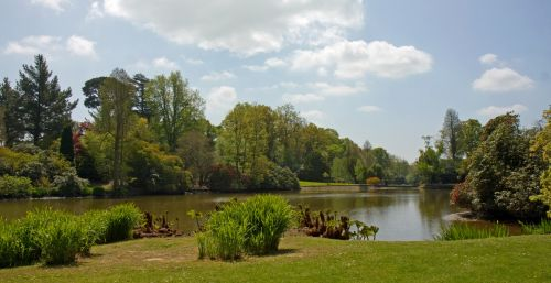 dekoratyvinis & nbsp, ežeras, ežeras, sodas, sodai, medžiai, augalai, mėlynas, gražus, vaizdas, nuotrauka, gamta, kraštovaizdis, apželdintas, ornamentinis ežeras