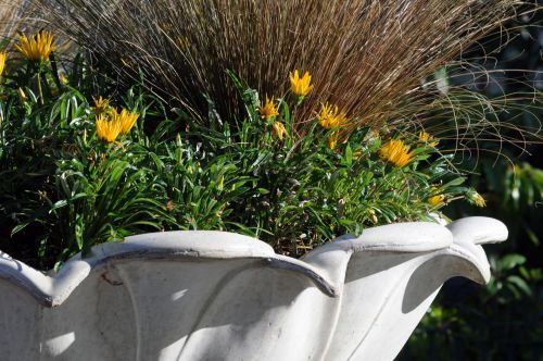 Ornate Flower Pot
