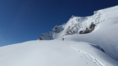 ortler backcountry skiiing alpine