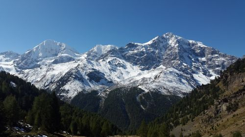ortler königsspitze south tyrol
