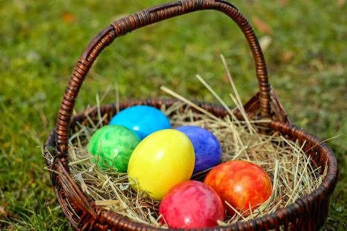 osterkorb colorful eggs bio