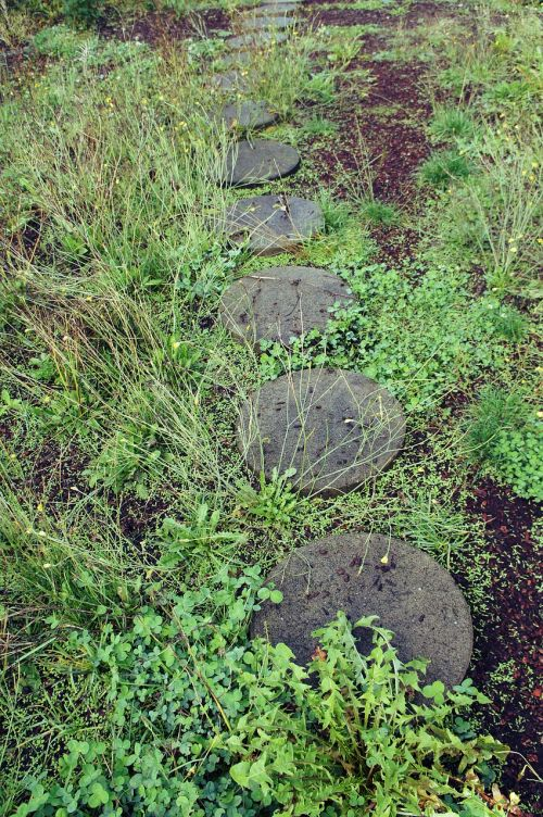 outdoor garden pathway stepping stones concrete
