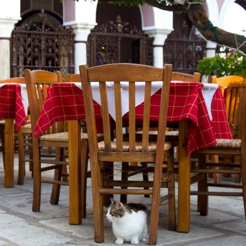 outdoor seating cat greece