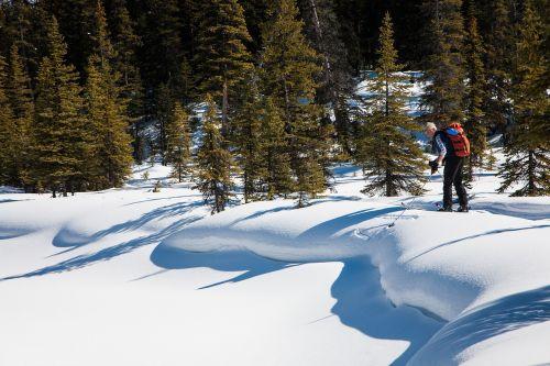 outdoors nature ski