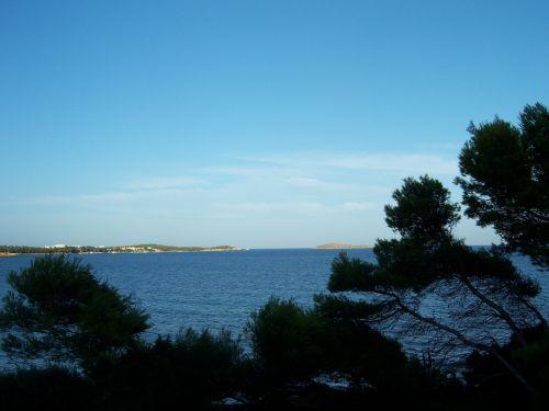 outlook sea trees