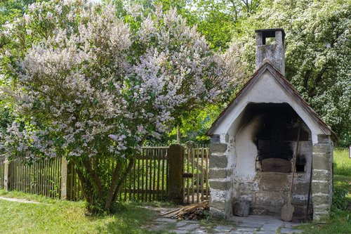 oven  oven baking  wood burning stove