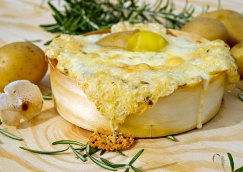 oven-baked cheese cheese baked