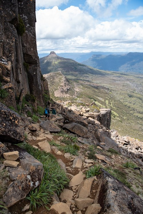 overland track  tasmania  wilderness
