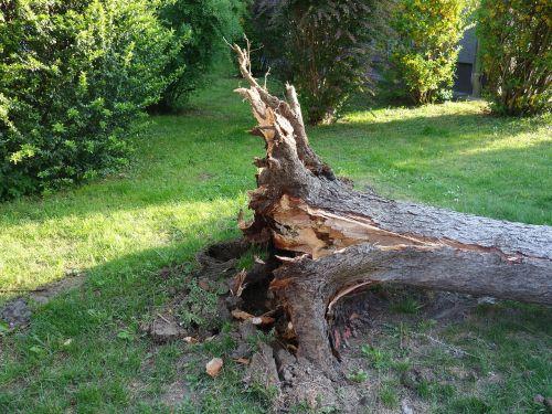 overturned broken storm