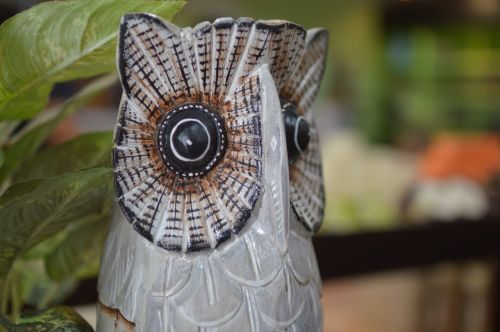 owl souvenirs gift