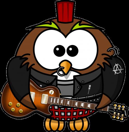 owl anarchy animal