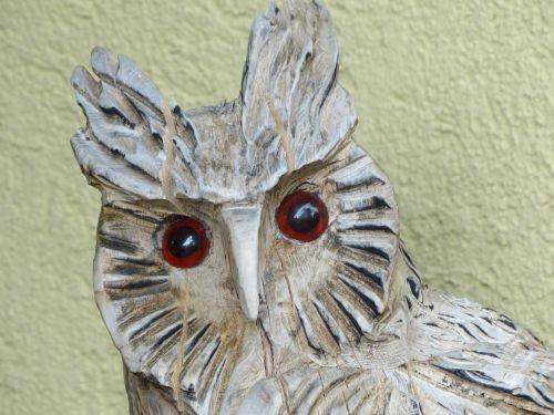 owl figure face