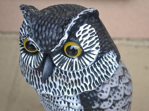 owl fake statue
