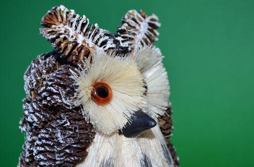 owl green bird