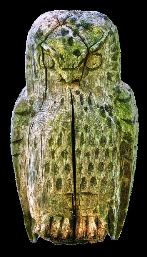owl sculpture holzfigur
