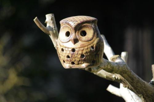 owl ceramic owl nesting box
