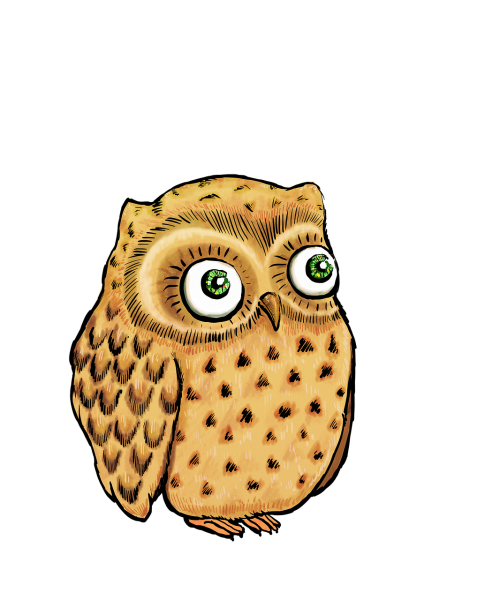 owl cute owl owl illustration