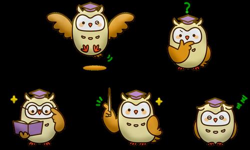 owl  wise  bird of prey