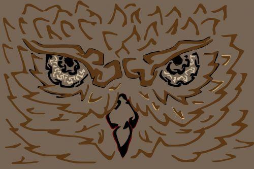 owl bird wild