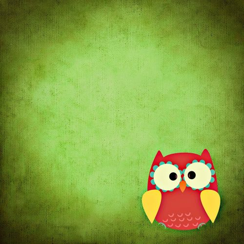 owl,colorful,funny,background,free illustrations,free images,royalty free
