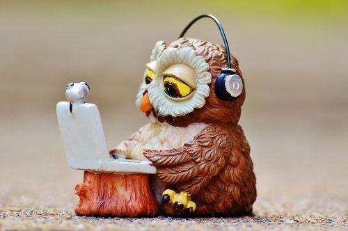owl computer headphones