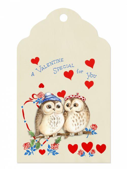 Owl Love Valentine Label