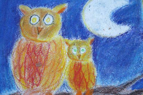 owls chalk art night