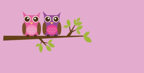 owls couple love