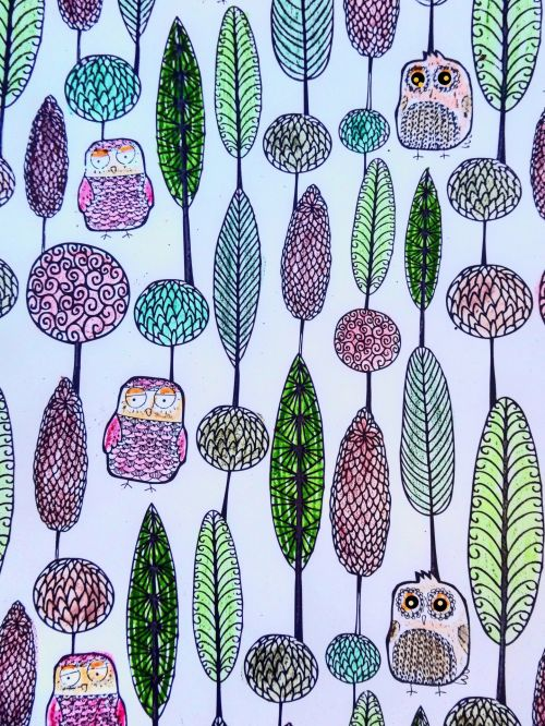 Owls And Plants Drawing