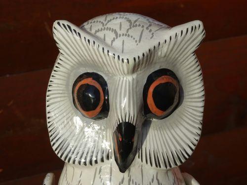 Owls Face