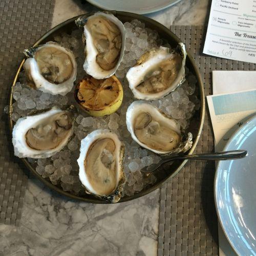 oysters seafood shellfish