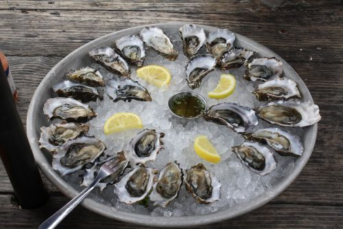 oysters half shell ice
