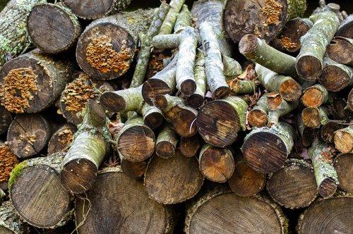 ozark firewood  firewood  logs