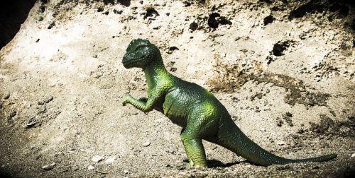 pachycephalosaurus dinosaur animal