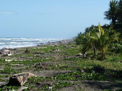 pacific costa rica beach