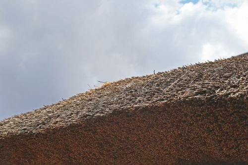 Packed Grass Ends On Lapa Roof