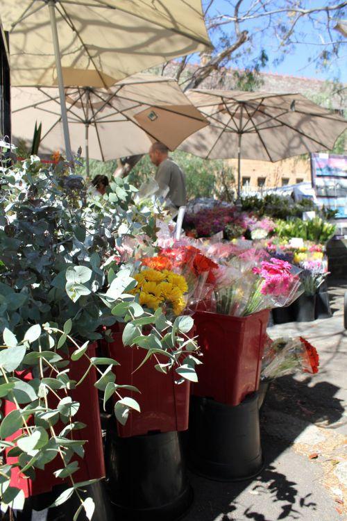 Paddington Market Flower Stall