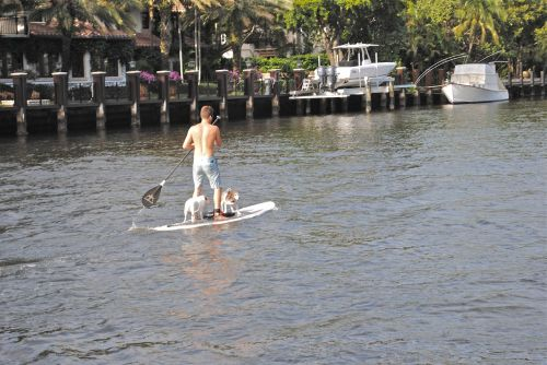 paddle board new river fort lauderdale