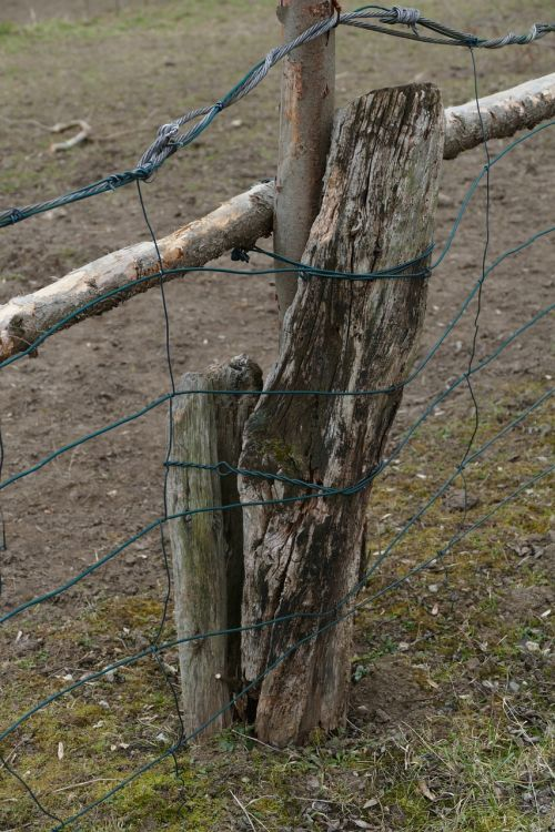 paddock fence wire