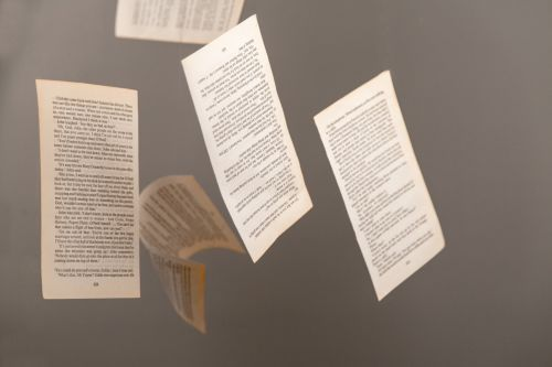 Pages From Book