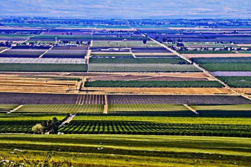 kraštovaizdis, slėnis, Žemdirbystė, ūkiai, dažytos, tapybos, dažytas kraštovaizdis