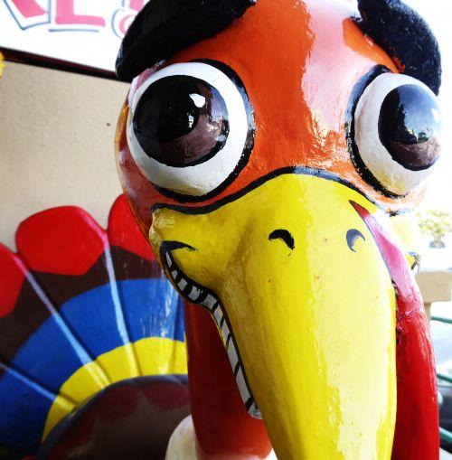 padėka, Turkija, spalvinga, ženklas, skatinimas, šviesus, Iš arti, akys, dažytos, dažytos kalakutienos skulptūra