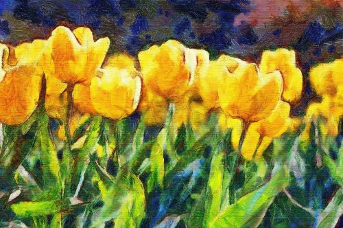 painting oil tulips