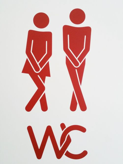 pair wc toilet