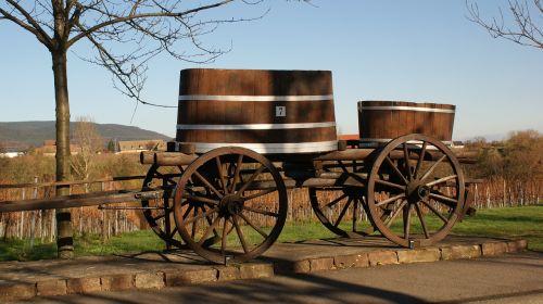 palatinate southern wine route vineyard